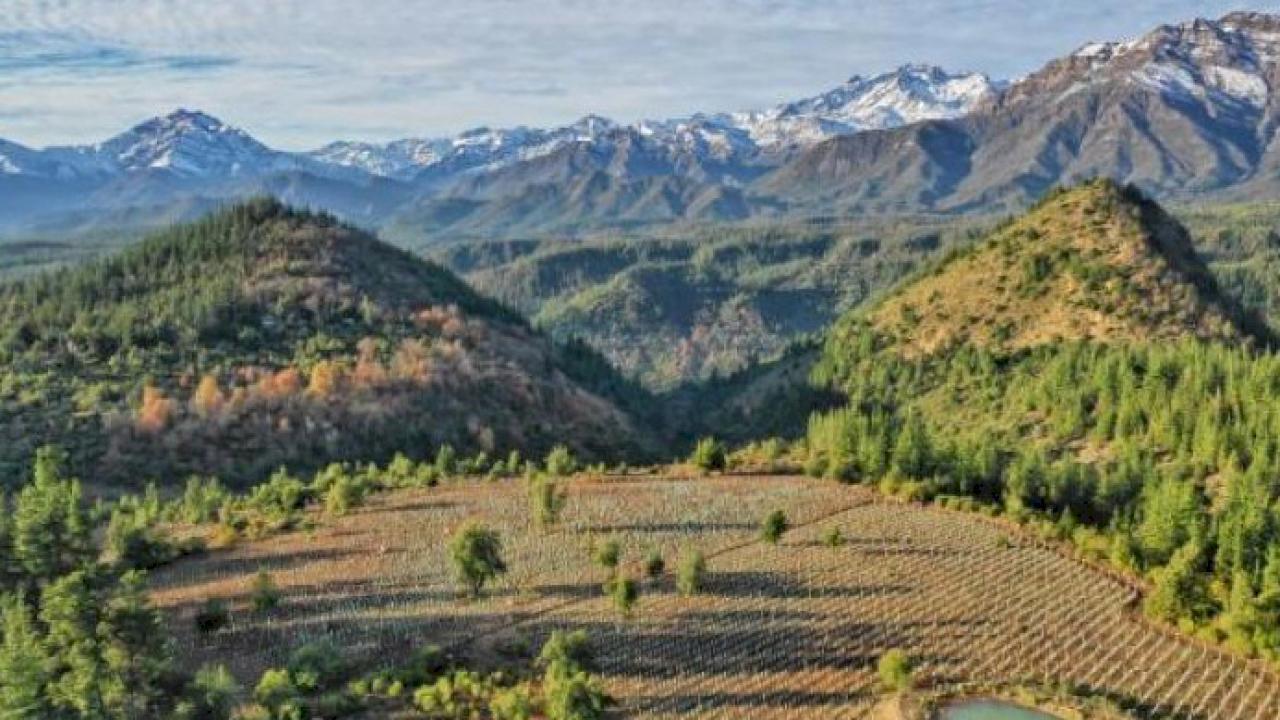 Cantina in vendita nella Valle di Colchagua, Cile.